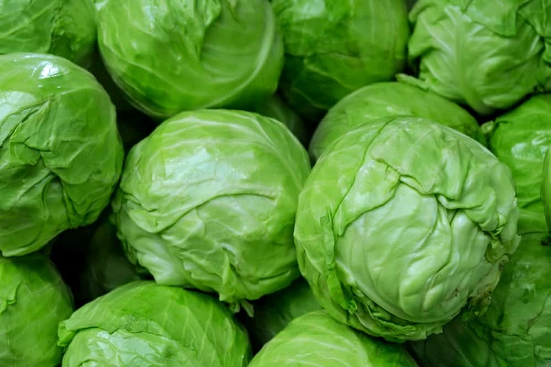 Brussels sprouts and anticancer properties: our light recipe