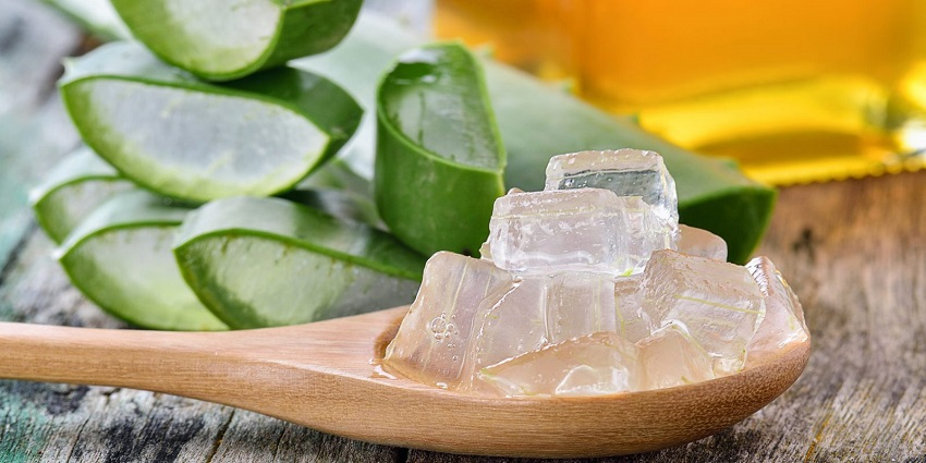 How to make homemade aloe vera gel and how to use it