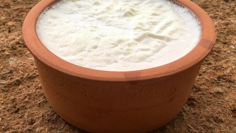 Homemade yogurt: here's how to prepare it (with or without yogurt maker)